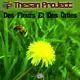 Thesan Project - Des Fleurs et des orties