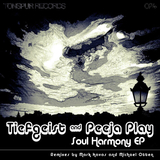 Soul Harmony Ep by Tiefgeist and Peeja Play mp3 download