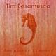 Tim Besamusca Amygdala E.P. Volume 4