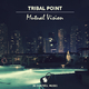Tribal Point Mutual Vision