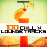 100 Chill ''n Lounge Tracks by Various Artists mp3 download