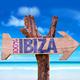 Various Artists 100% Ibiza