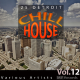 25 Detroit Chillhouse, Vol. 12 by Various Artists mp3 download
