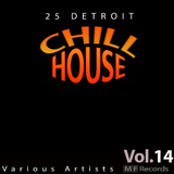 25 Detroit Chillhouse, Vol. 14 by Various Artists mp3 download