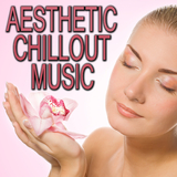 Aesthetic Chillout Music by Various Artists mp3 download