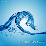 After Gym Tunes Vol. 2 by Various Artists mp3 download