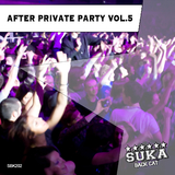 After Private Party, Vol. 5 by Various Artists mp3 download