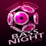 Bass Night: EDM by Various Artists mp3 download