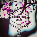 Bigeous Tunes, Vol. 15 by Various Artists mp3 download