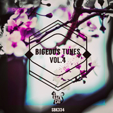 Bigeous Tunes, Vol. 4 by Various Artists mp3 download