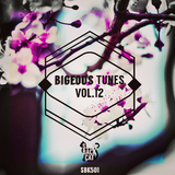 Bigeous Tunes Vol.12 by Various Artists mp3 download