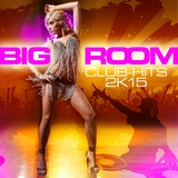 Bigroom Club-Hits 2k15 by Various Artists mp3 download