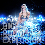 Bigroom Explosion by Various Artists mp3 download