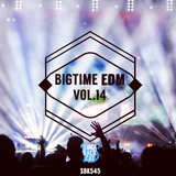 Bigtime EDM, Vol. 14 by Various Artists mp3 download