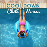 Cool Down, Chill House by Various Artists mp3 download