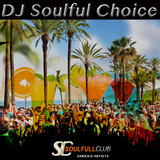 DJ Soulful Choice by Various Artists mp3 download