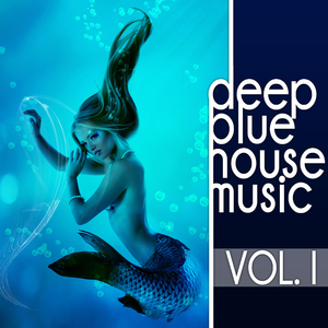 Various Artists - Deep Blue Housemusic Vol.1 (Deep House Amigo (Detroit))