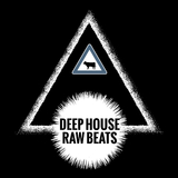 Deep House Raw Beats by Various Artists mp3 download