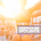 Deephouse Spotlights by Various Artists mp3 download