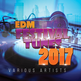 EDM Festival Tunes 2017 by Various Artists mp3 download