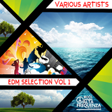 EDM Selection, Vol 1. by Various Artists mp3 download