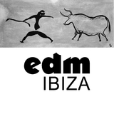 Edm: Ibiza by Various Artists mp3 download