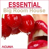 Essential Big Room by Various Artists mp3 download