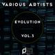 Various Artists  - Evolution, Vol. 3