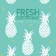 Various Artists - Fresh Electronic Music Beats, Vol. 2