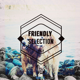 Friendly Selection, Vol. 9 by Various Artists mp3 download