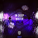 In Deep Water, Vol.14 by Various Artists mp3 download