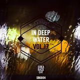 In Deep Water, Vol. 17 by Various Artists mp3 download