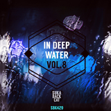 In Deep Water, Vol. 8 by Various Artists mp3 download