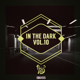 In the Dark Vol.10 by Various Artists mp3 download