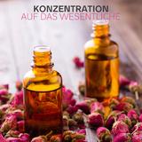 Konzentration auf das Wesentliche by Various Artists mp3 download