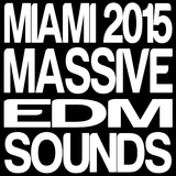 Miami 2015 Massive EDM Sounds by Various Artists mp3 download