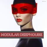 Modular Deephouse by Various Artists mp3 download