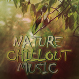 Nature Chillout Music by Various Artists mp3 download