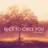 Nice to Chill You, Vol. 3 by Various Artists mp3 download