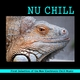 Various Artists - Nu Chill(First Selection of the New Electronic Chill Music)