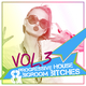Various Artists - Progressive House & Bigroom Bitches, Vol. 3