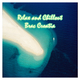Various Artists Relax and Chillout Brac Croatia