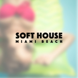 Soft House Miami Beach by Various Artists mp3 download