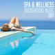 Various Artists - Spa & Wellness Background Music 2017