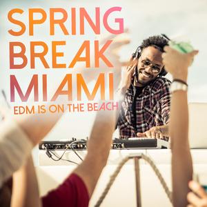 Various Artists - Spring Break Miami - EDM Is on the Beach (Dirrty Budapest)