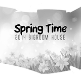 Spring Time - 2014 Bigroom House by Various Artists mp3 download