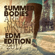 Various Artists Summer Bodies Are Made in Winter: EDM Edition 2017