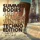 Various Artists - Summer Bodies are made in Winter: Techno Edition 2017