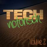 Technotorisch, Vol. 2 by Various Artists mp3 download