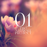 The Ambient Project, Vol. 1 by Various Artists mp3 download